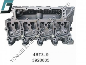 CUMMINS 4BT3.9 CYLINDER HEAD, 3920005